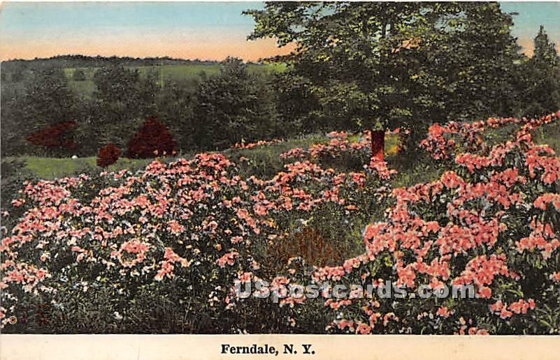Flower Scene - Ferndale, New York NY Postcard