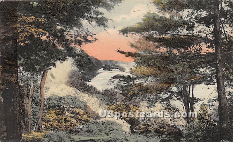 Glimpse of Neversink River - Ferndale, New York NY Postcard