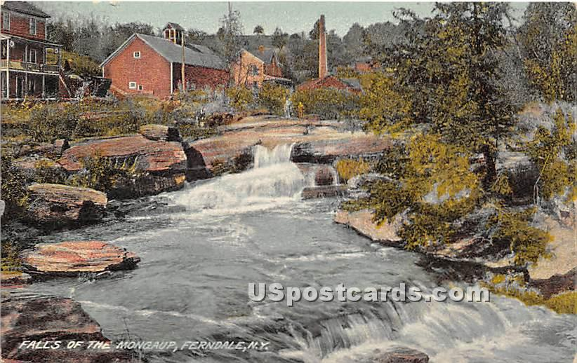 Falls of the Mongaup - Ferndale, New York NY Postcard