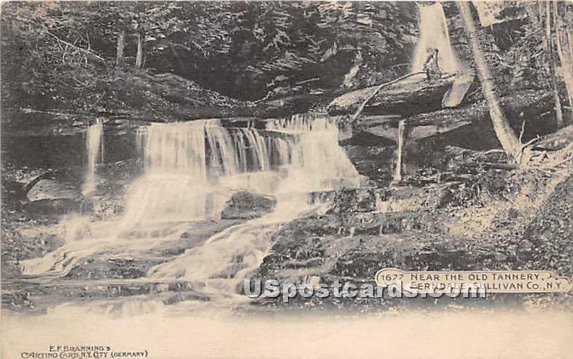 Near the Old Tannery - Ferndale, New York NY Postcard