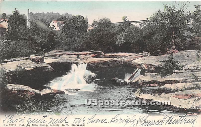 Falls and Rapids - Ferndale, New York NY Postcard