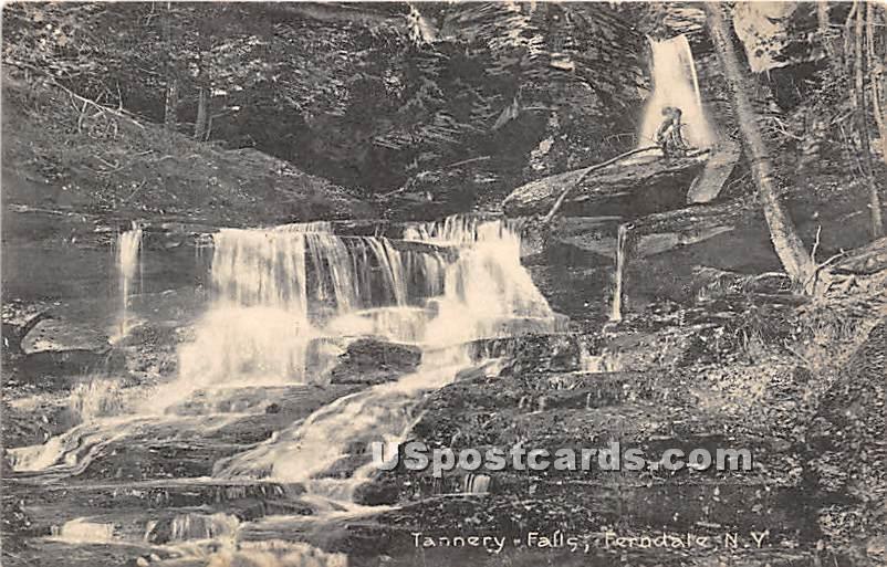 Tannery Falls - Ferndale, New York NY Postcard