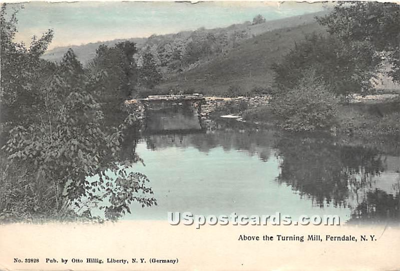 Above Turning Mill - Ferndale, New York NY Postcard