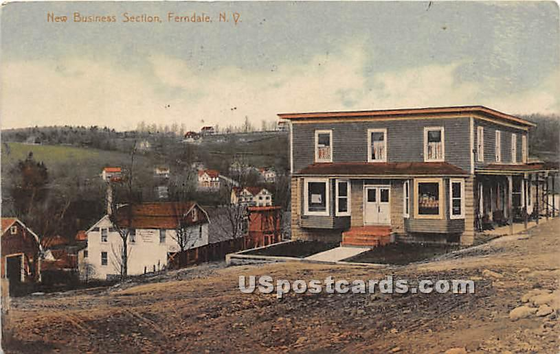 New Business Section - Ferndale, New York NY Postcard
