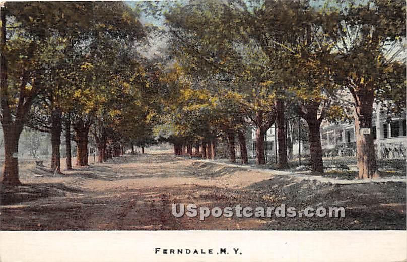 Street Scene - Ferndale, New York NY Postcard