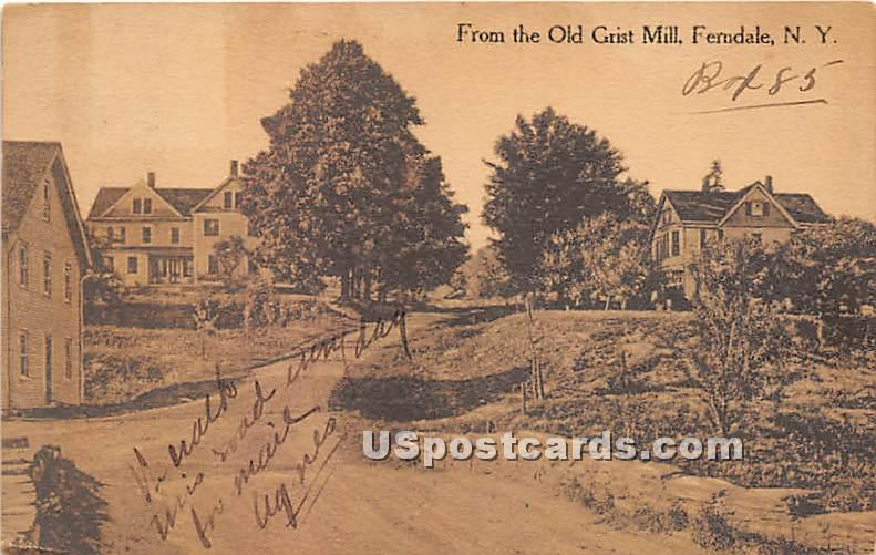 From the Old Grist Mill - Ferndale, New York NY Postcard
