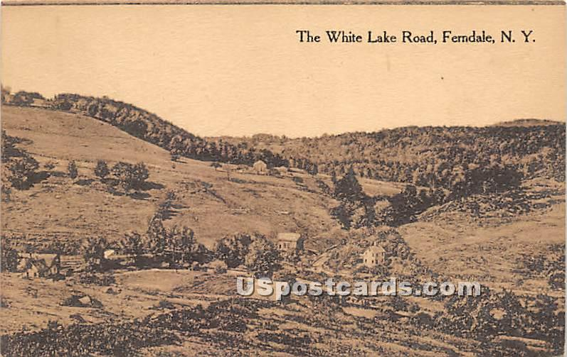 White Lake Road - Ferndale, New York NY Postcard