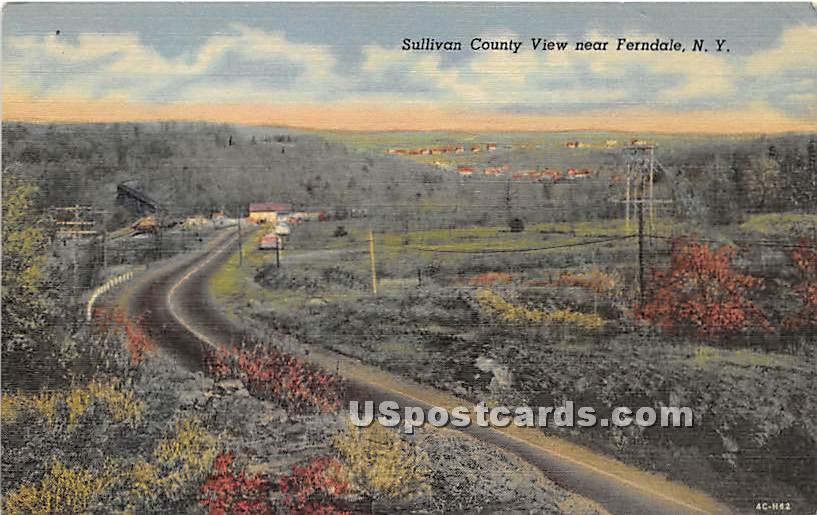Sullivan County View - Ferndale, New York NY Postcard