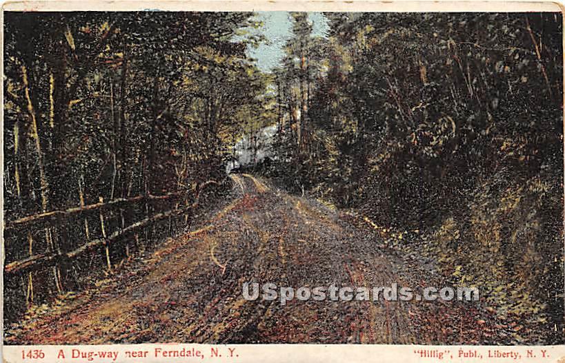 Dug Way - Ferndale, New York NY Postcard