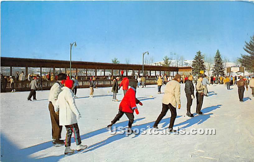Ice Skating Rink - Ferndale, New York NY Postcard