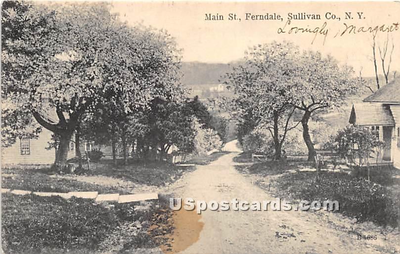Main Street - Ferndale, New York NY Postcard