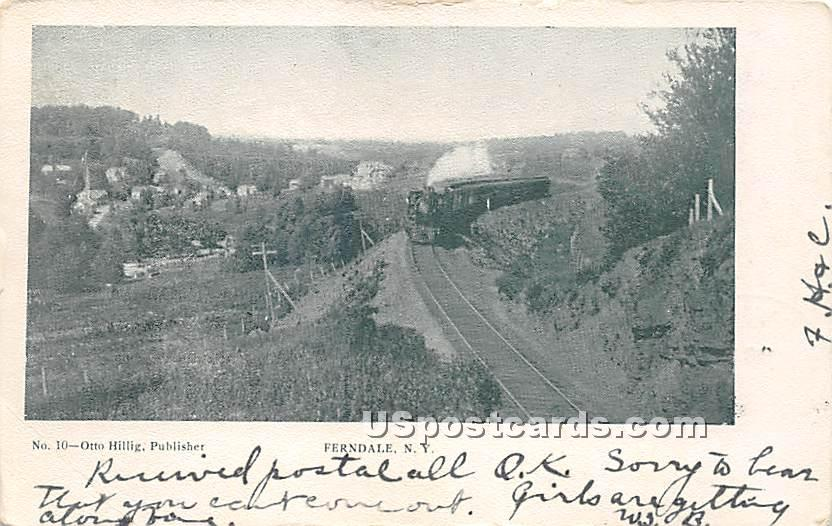 Railroad Track - Ferndale, New York NY Postcard