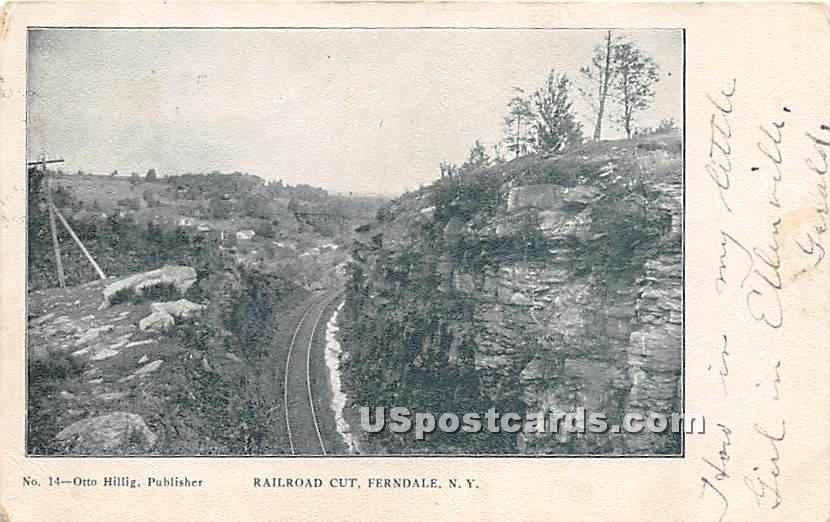 Railroad Cut - Ferndale, New York NY Postcard