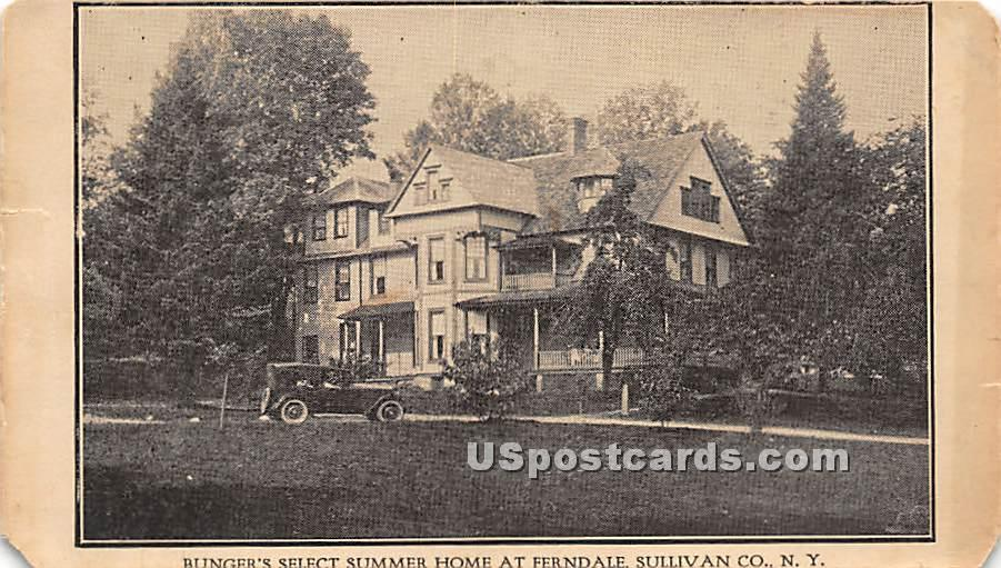 Bunger's Select Summer Home - Ferndale, New York NY Postcard