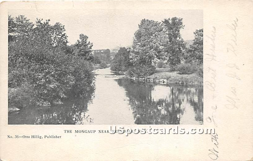 The Mongaup - Ferndale, New York NY Postcard