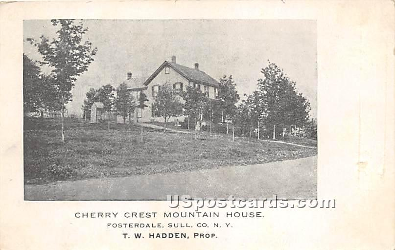Cherry Crest Mountain House - Fosterdale, New York NY Postcard