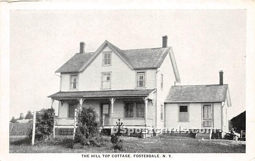 The Hill Top Cottage - Fosterdale, New York NY Postcard
