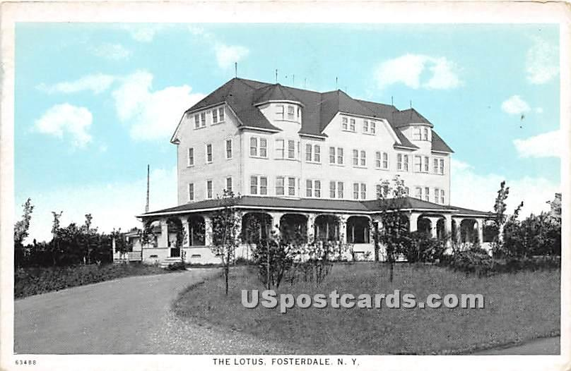 The Lotus - Fosterdale, New York NY Postcard