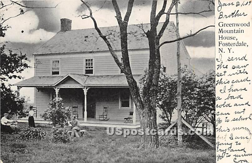 Greenwood Mountain House - Fosterdale, New York NY Postcard