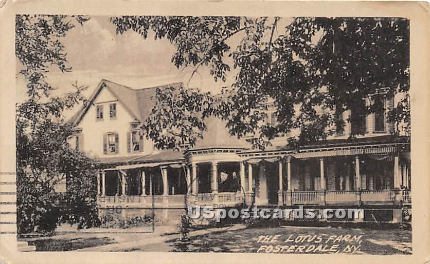 The Lotus Farm - Fosterdale, New York NY Postcard