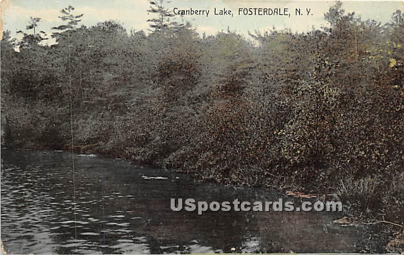 Cranberry Lake - Fosterdale, New York NY Postcard