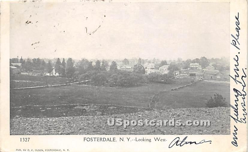 Looking West - Fosterdale, New York NY Postcard
