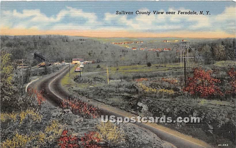 Sullivan County - Ferndale, New York NY Postcard