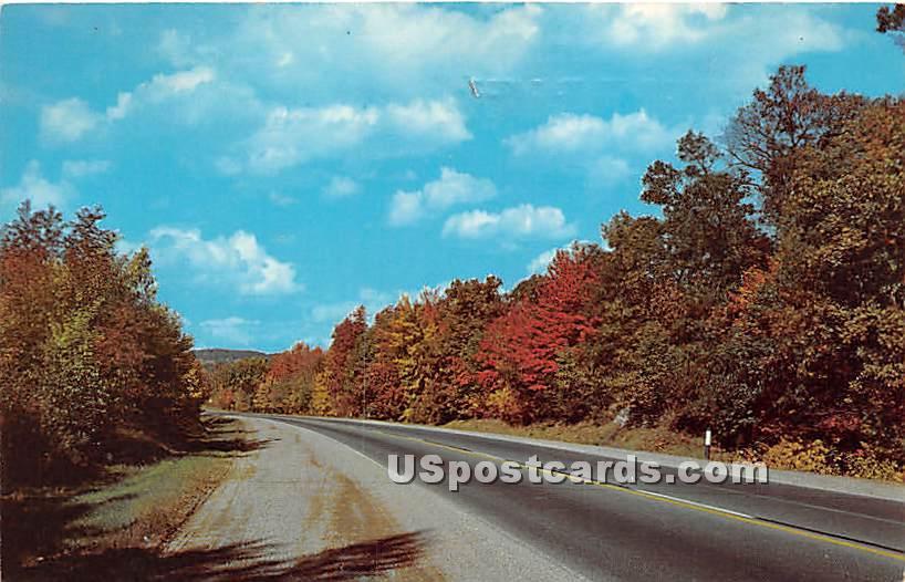 Franklinville, New York NY Postcard