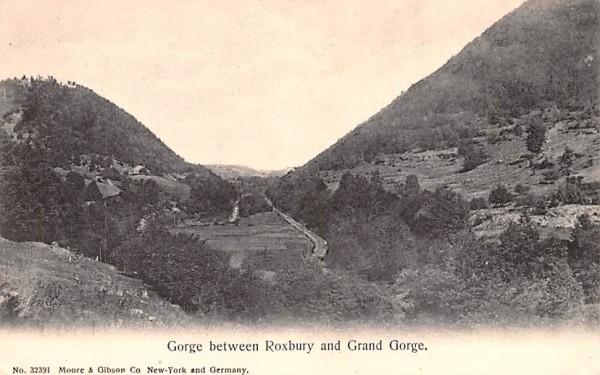 Gorge between Roxbury & Grand Gorge New York Postcard