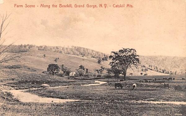 Farm Scene, Along the Bearkill Grand Gorge, New York Postcard