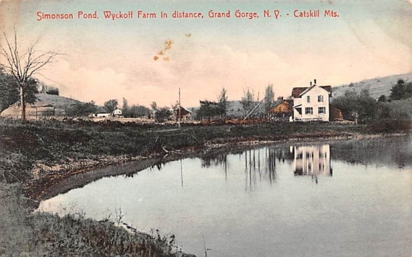 Simonson Pond Grand Gorge, New York Postcard
