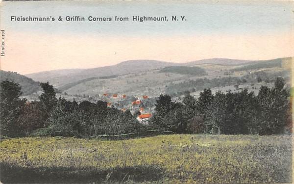 Fleischmann's & Griffin Corners Grand Gorge, New York Postcard