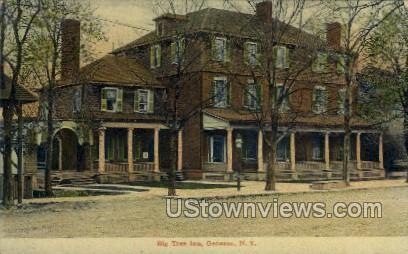Big Tree Inn - Geneseo, New York NY Postcard