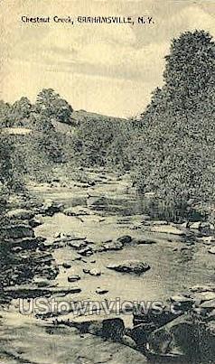 Chestnut Creek - Grahamsville, New York NY Postcard