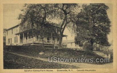 Sulphur Spring Farm House - Greenville, New York NY Postcard