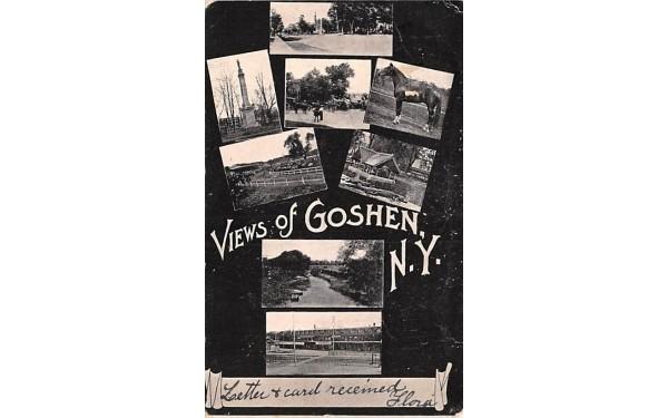 View of Goshen New York Postcard