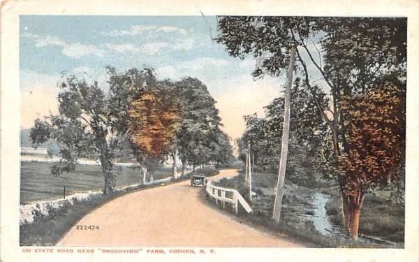 State Road Goshen, New York Postcard