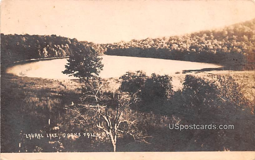 Laural Lake - Goaks Falls, New York NY Postcard