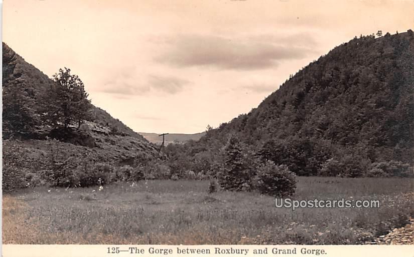 Gorge Between Roxbury - Grand Gorge, New York NY Postcard