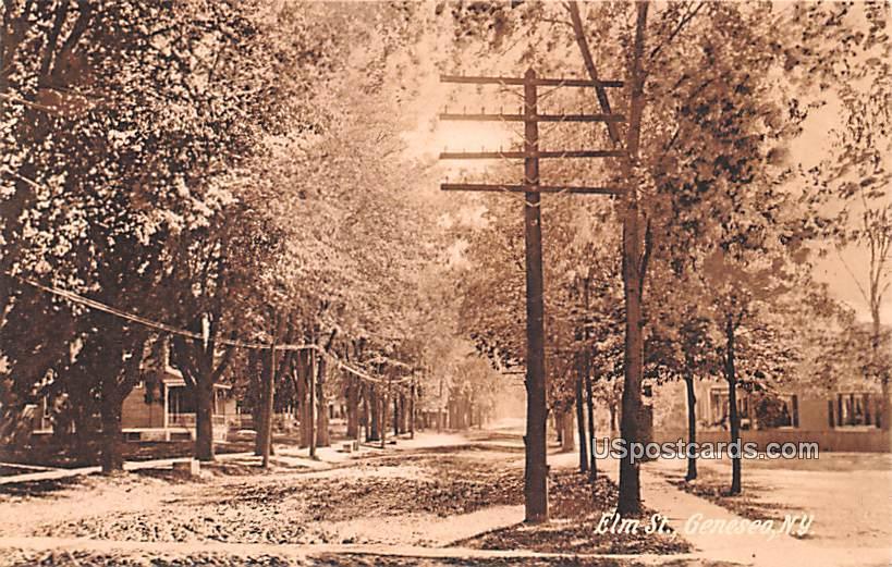 Elm Street - Geneseo, New York NY Postcard