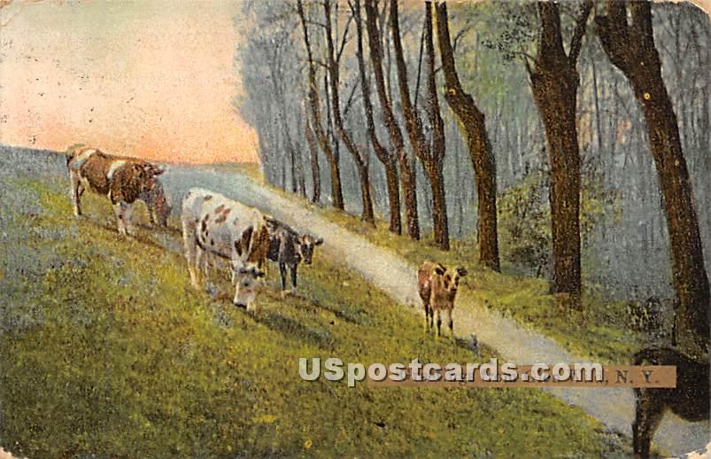 Greetings from - Glen Wild, New York NY Postcard