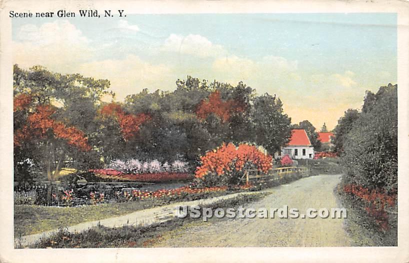 Road Scene - Glen Wild, New York NY Postcard
