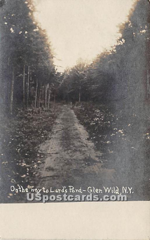 On the way to Lord's Pond - Glen Wild, New York NY Postcard