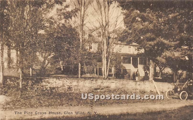The Pine Grove House - Glen Wild, New York NY Postcard