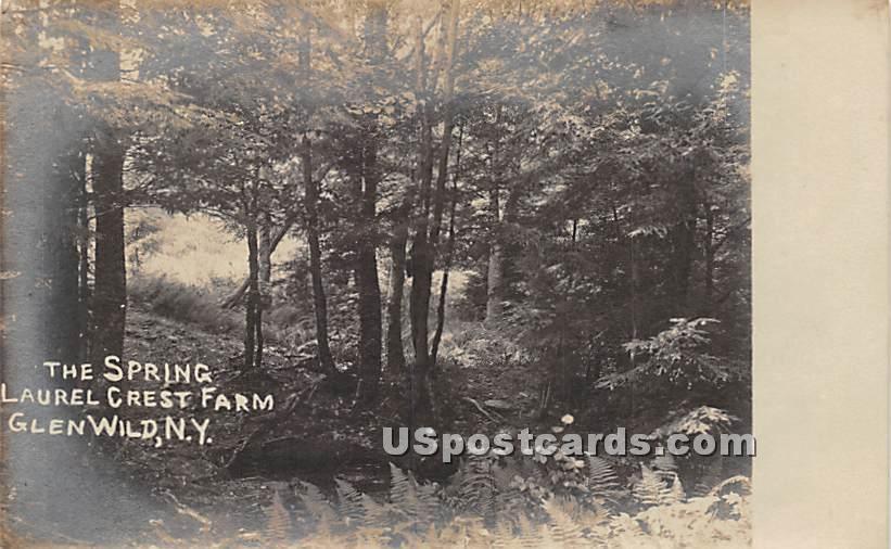 The Spring Laurel Crest Farm - Glen Wild, New York NY Postcard