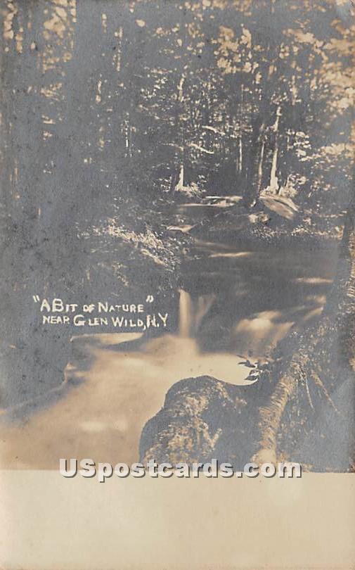 A Bit of Nature - Glen Wild, New York NY Postcard