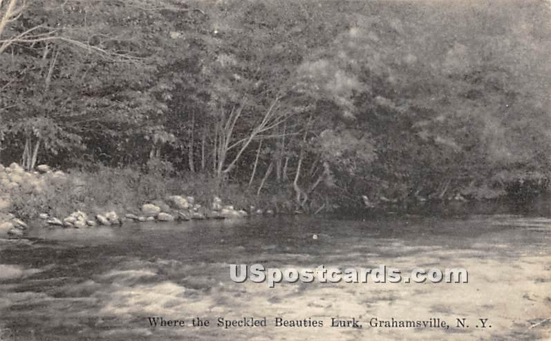 Where the Speckled Beauties Lurk - Grahamsville, New York NY Postcard