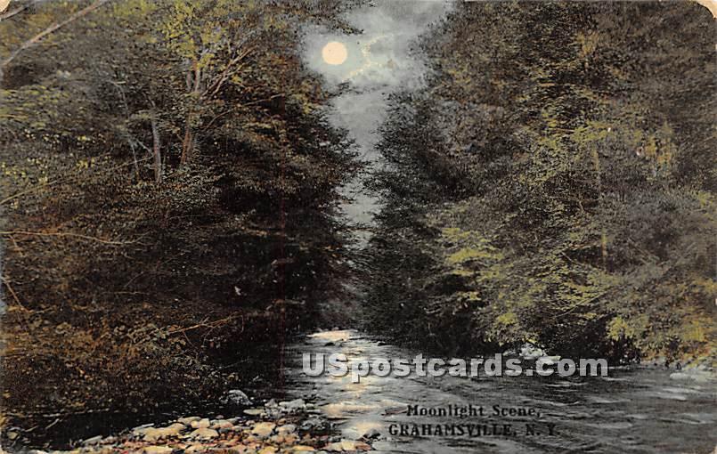 Moonlight Scene - Grahamsville, New York NY Postcard