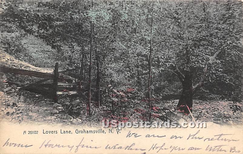 Lovers Lane - Grahamsville, New York NY Postcard
