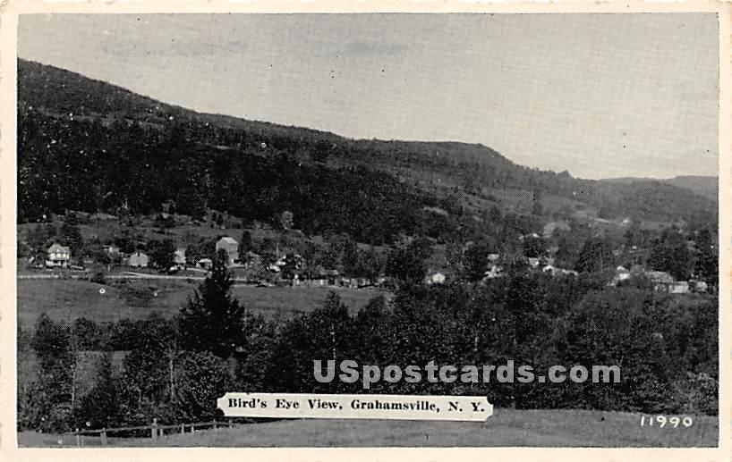 Birds Eye View - Grahamsville, New York NY Postcard